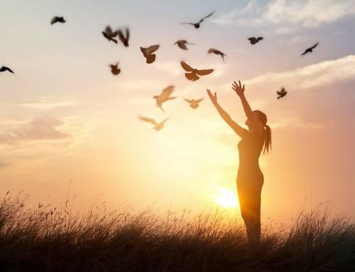 O Verbo Empreender e o Verbo Sonhar